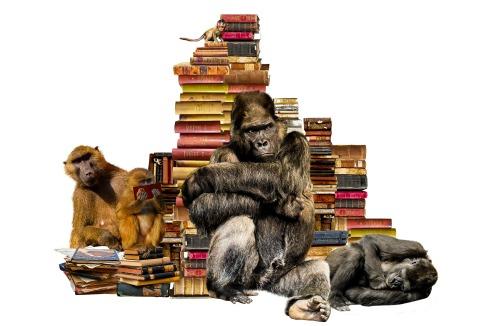apes-books-blog